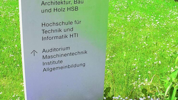 Verankert: Die Fachrichtungen Architektur, Bau und Holz sind in Burgdorf verankert. Werden sie bald entwurzelt?  (Bild: Hans Mathys)