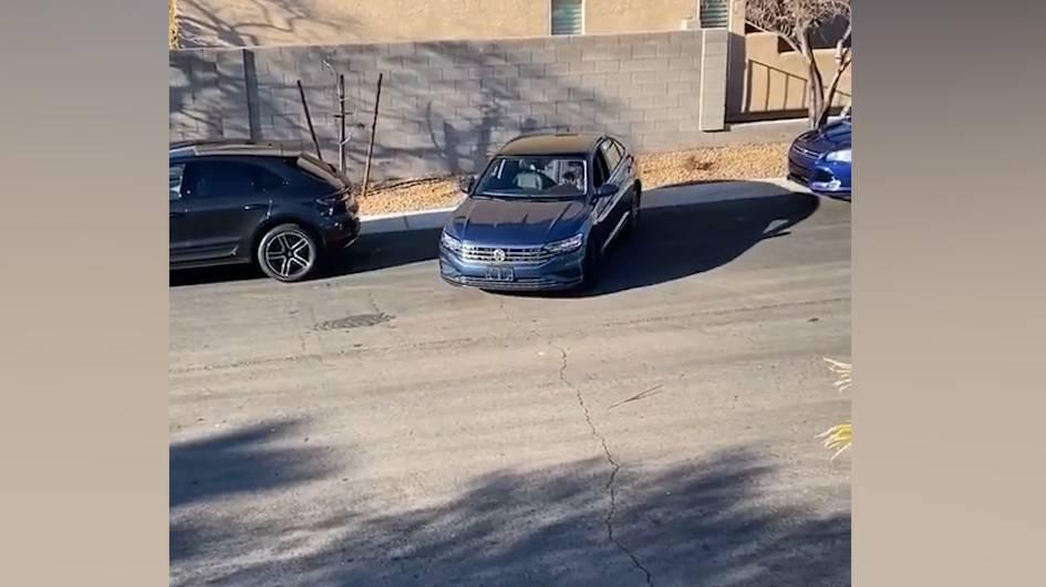 Dieses absurde Parkier-Video geht viral – Twitter lacht, Tiktok ist skeptisch