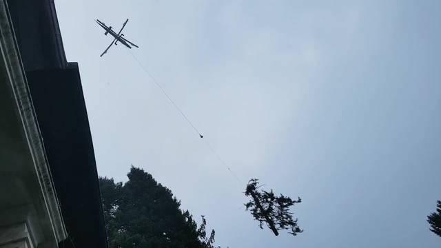 Nach Sturm Burglind: In Solothurn an der Baselstrasse 6 sind am Donnerstagmorgen 21 Bäume gefällt und mit dem Helikopter abtransportiert worden