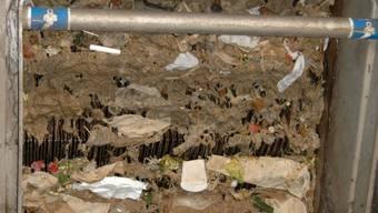 Täglich werden Fest- und Schadstoffe in die Kanalisation gespült.