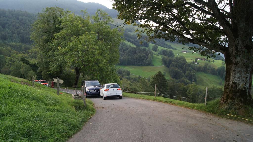 Frontalkollision auf Bergstrasse in Walchwil