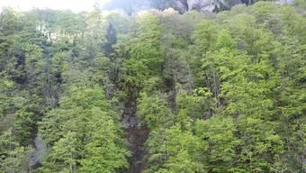 Zwei Berggängerinnen (75) verunglückten oberhalb von Diesbach GL tödlich. Aus noch ungeklärten Gründen stürzten sie rund 190 Meter in die Tiefe.