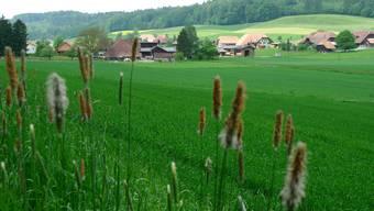 Blick auf Lüterkofen-Ichertswil