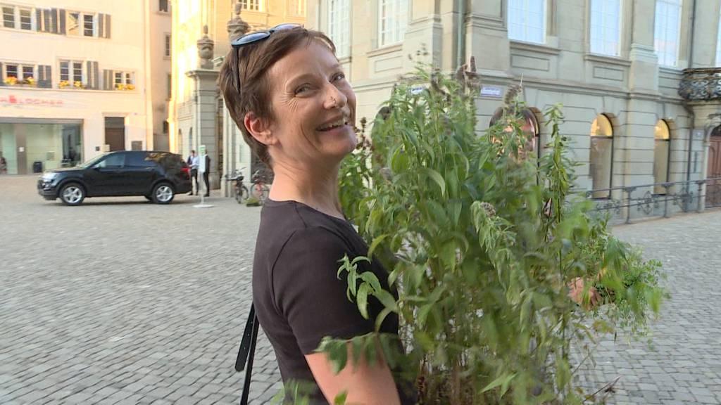 Grüne Münsterwiese wird verkauft