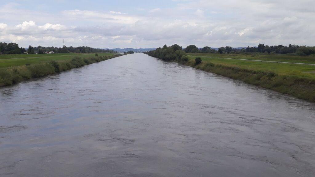 Fuss- und Velowege am Rhein wegen Hochwassergefahr gesperrt
