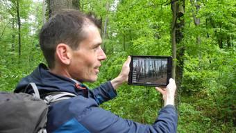 Christian Rosset demonstriert im Wald bei Urdorf die virtuelle Bibliothek.