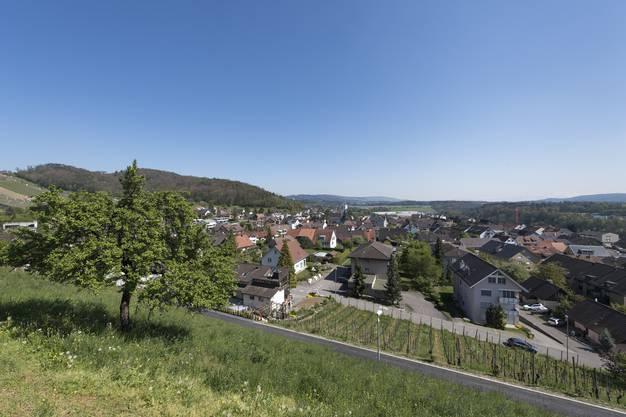 Im ehemaligen Bauerndorf über der Reuss gibt es heute noch sechs Bauernhöfe und drei Gemüsebaubetriebe.
