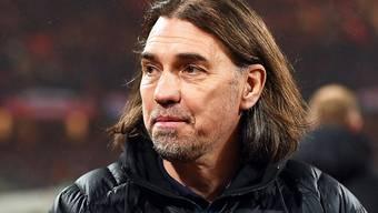 Martin Schmidt ist neuer Trainer des FC Augsburg