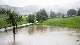 Wie letzte Woche bei Bad Schauenburg sorgte der Starkregen für überschwemmte Wiesen und Keller. (Archiv)