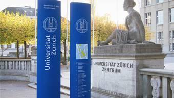 Ähnlich wie diese Platz- und Planstelen, wie sie für die Universität Zürich aufgestellt wurden, könnten die Stelen auch in Dietikon aussehen.
