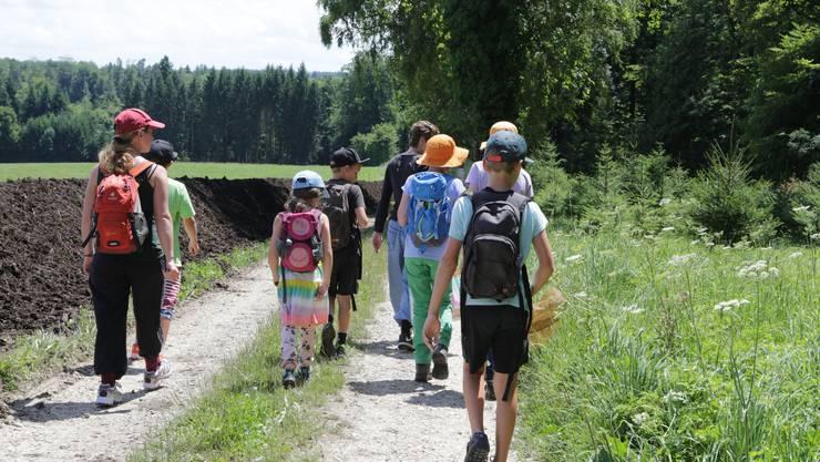 Die Bucheggberger Ferienpässer auf dem Weg in den Wald