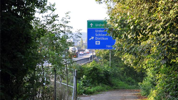 Im Hardwald befand sich die grösste Deponie des Limmattals - 200 Hektaren Land sind belastet.