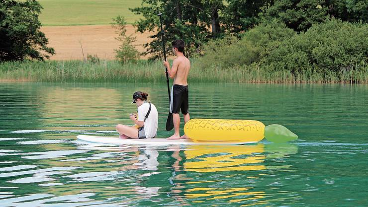 Zu nah am Ufer: Stand-up-Paddler auf dem Hallwilersee.