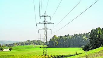 Die 220 kV-Hochspannungsleitung im Reusstal zwischen Niederwil und Obfelden soll auf 380 kV erweitert werden.