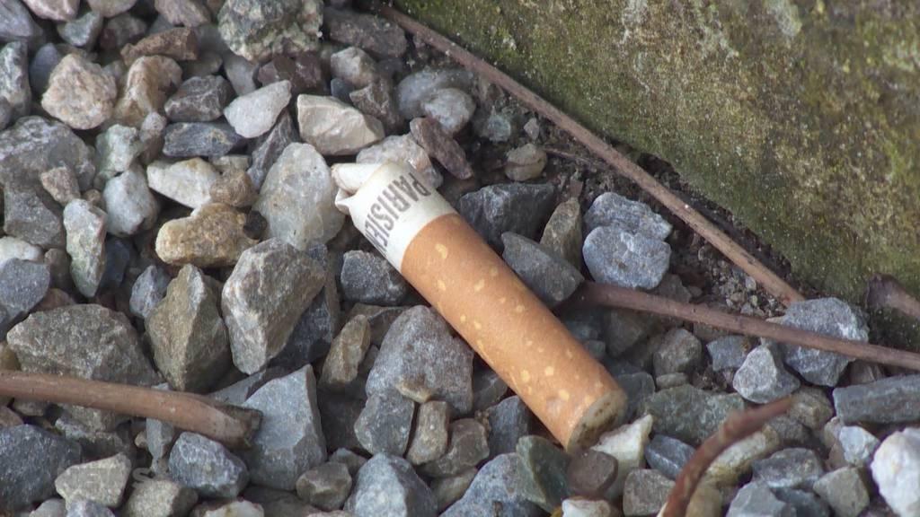 Burgdorfer Schüler sammeln tausende weggeworfene Zigarettenstummel ein