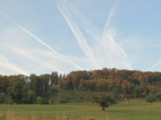 Der Herbst ist im Anmarsch. Frenkendorf - Liestal (Bienenberg)