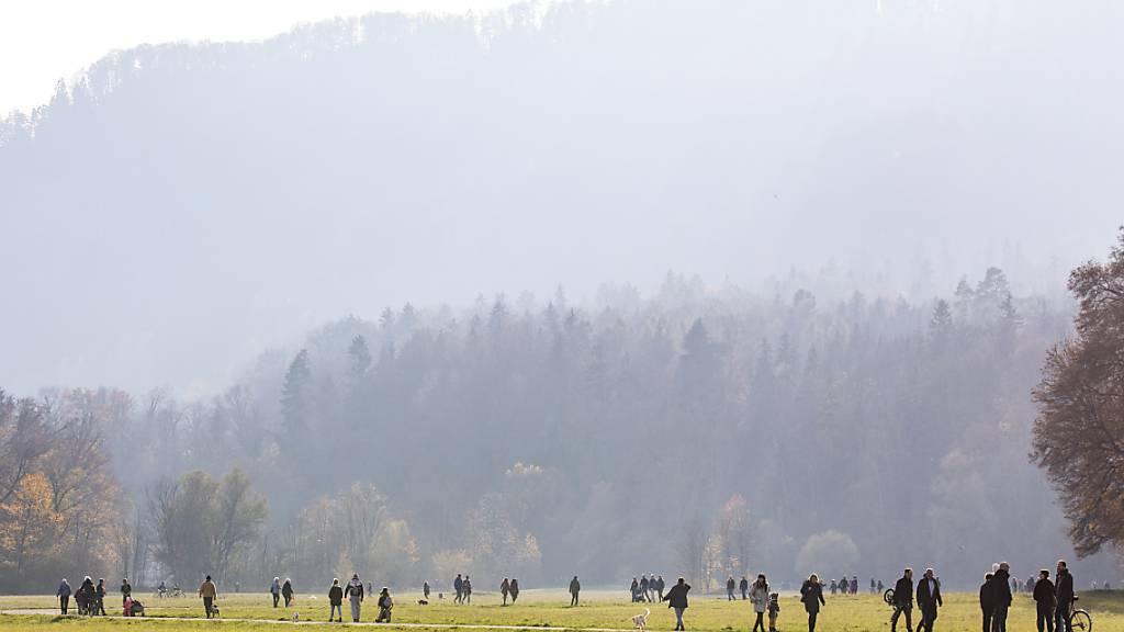 Das Jahr 2020 war annähernd so warm wie das Rekordjahr 2018. Im Bild Spaziergänger im Novemer auf der Allmend in Zürich.