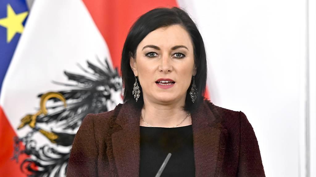 ARCHIV - Elisabeth Köstinger (ÖVP), Ministerin für Landwirtschaft, Regionen und Tourismus in Österreich, spricht auf einer Pressekonferenz. (Archivbild) Foto: Herbert Neubauer/APA/dpa
