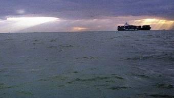 Ein rätselhafter Schmutzfilm auf dem Ärmelkanal macht Seevögeln zu schaffen (Symbolbild)