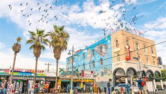 Nicht nur Hipster und Hippies, Surfer und Skater: Hinter den Fassaden am Venice Beach wächst die nächste digitale Revolution heran. shutterstock