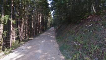 Der Zwischenfall ereignete sich beim Sonnenberg. (Archivbild)