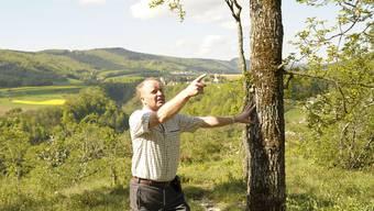 Die Forstgemeinschaft Blauen erhält den Binding Preis