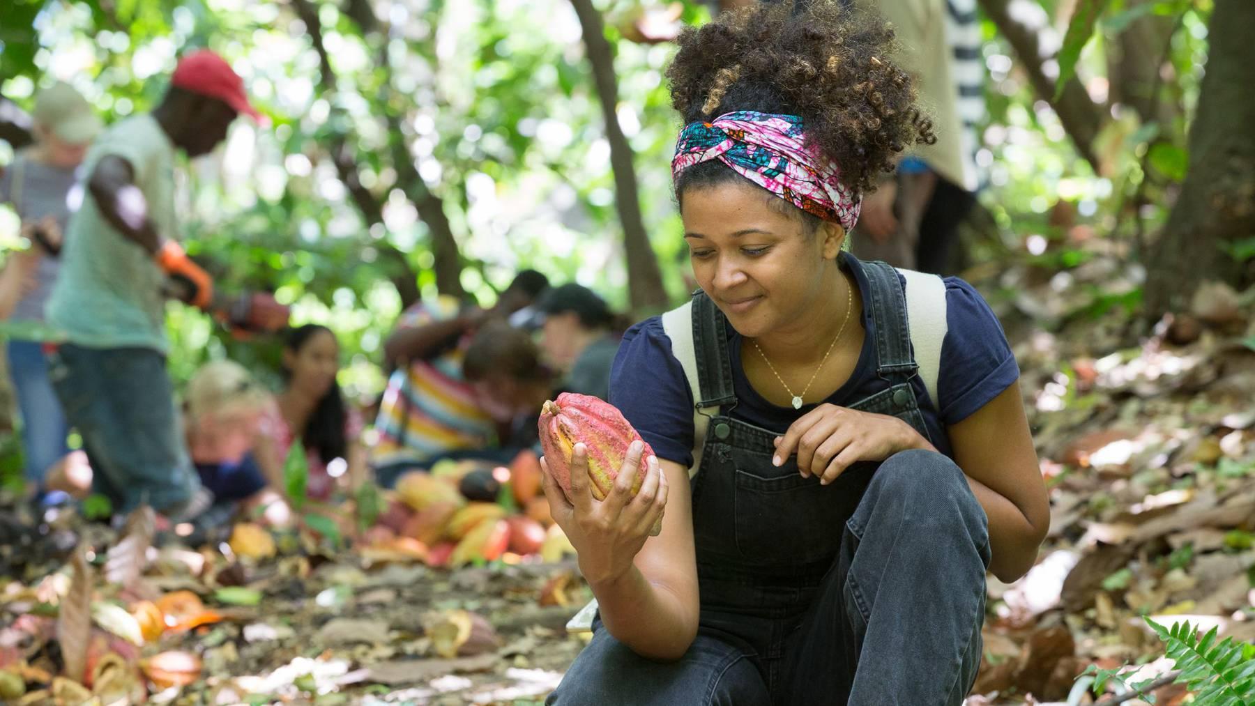 Grenada Chocolate Fest