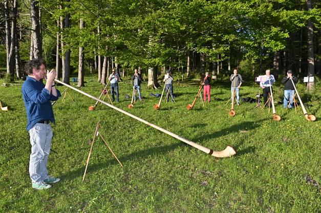 Oberhalb der Hupp Lodge in Wisen haben sie direkt am Waldrand ihre Instrumente aufgebaut.