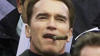 """Auch """"Arnie"""" darf nicht überall rauchen (Archiv)"""