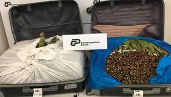 Der Litauer reiste mit rund 40 Kilogramm Khat im Gepäck.