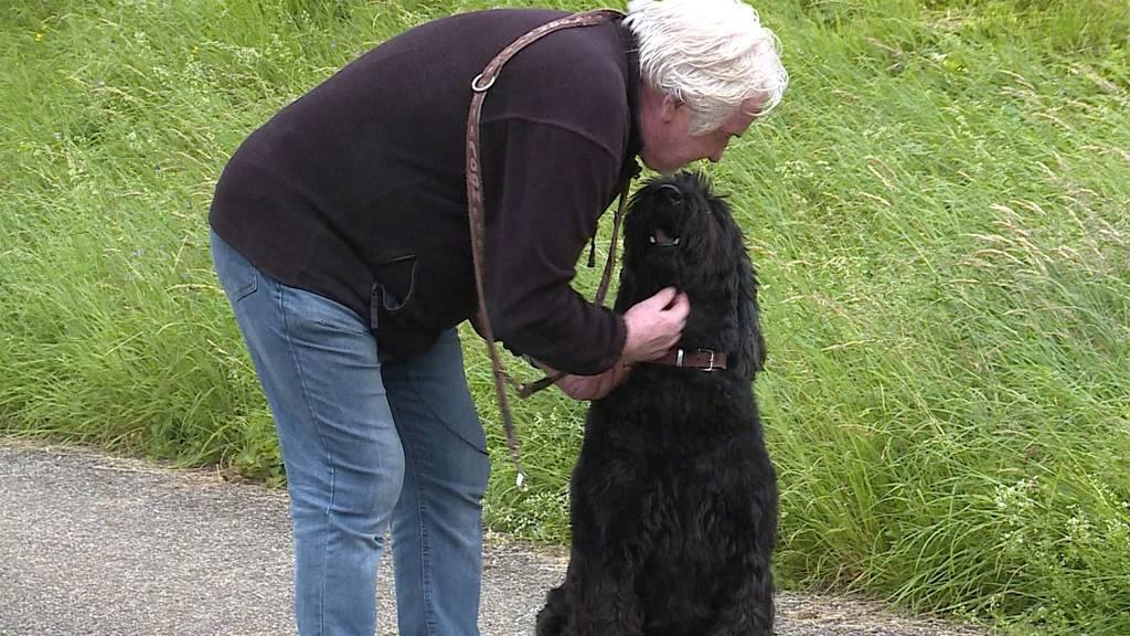 Handling schwieriger Hunde