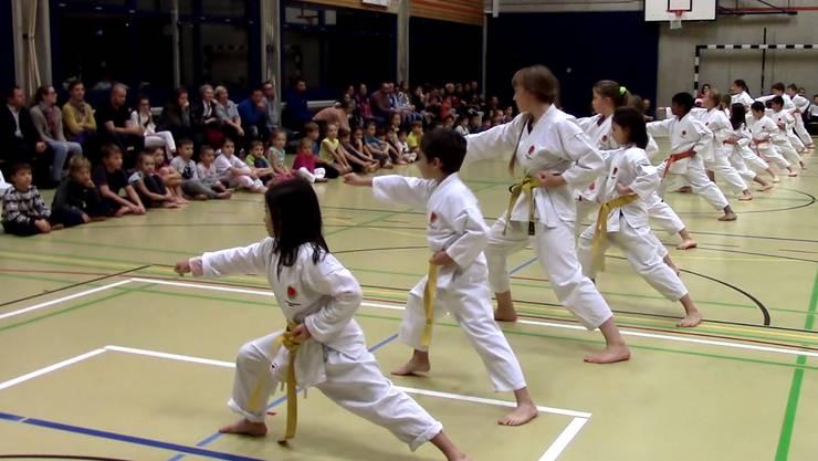Karate-Kids Kampfsportschule Aarau