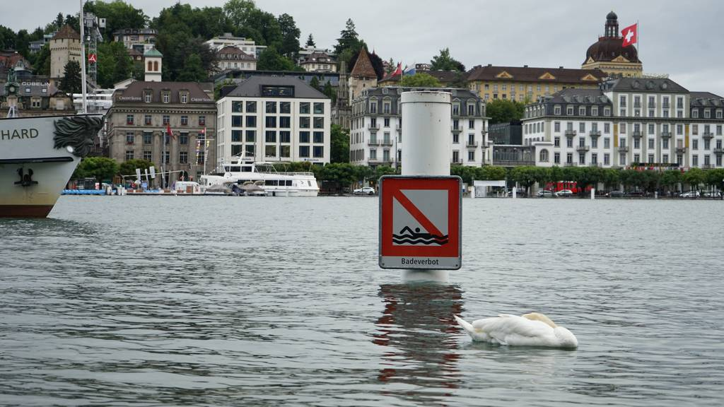 So sieht die Hochwassersituation in der Zentralschweiz aus
