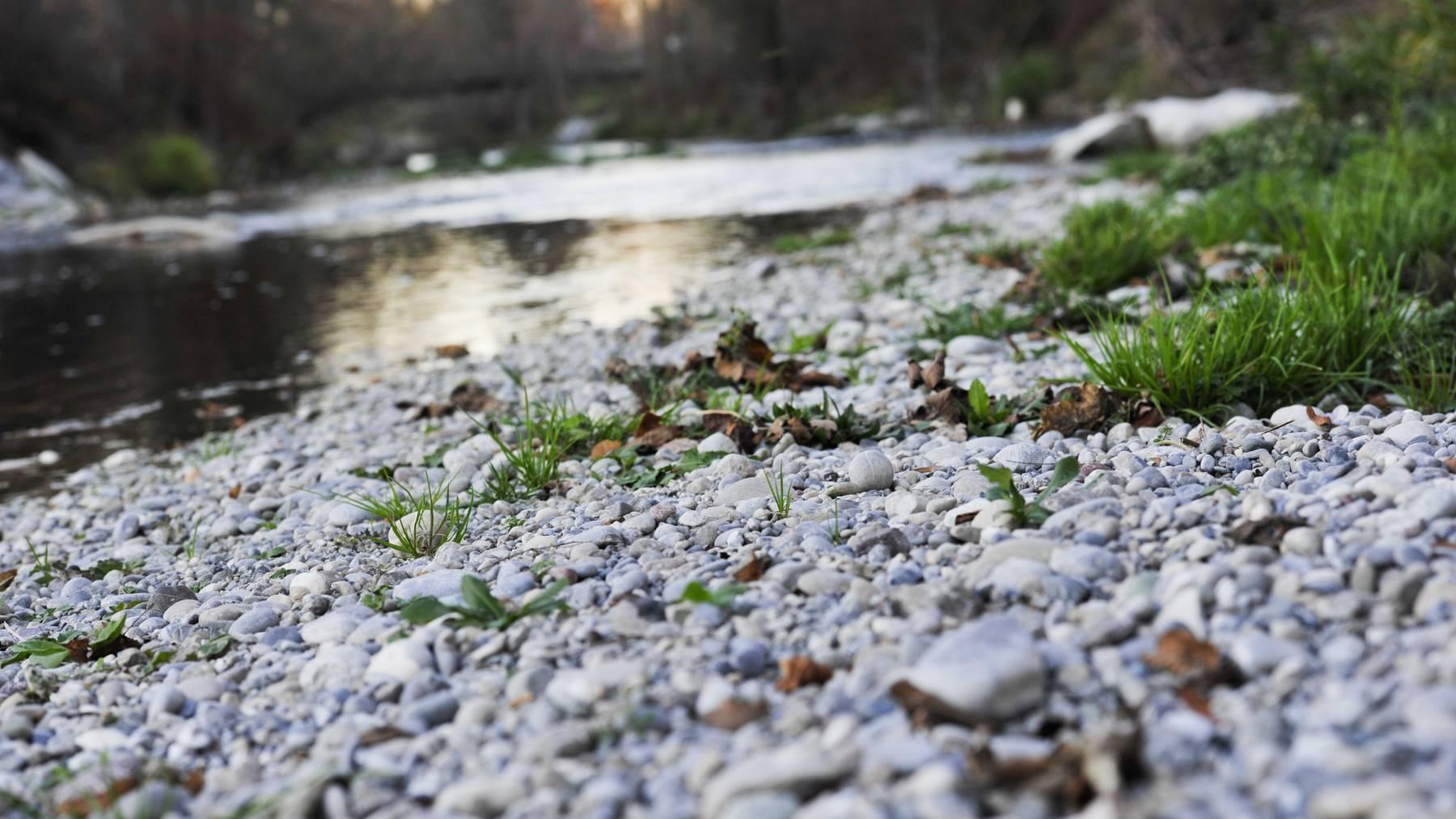 Die Murg in Frauenfeld führt nur wenig Wasser mit sich.
