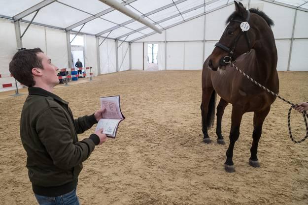 Die Pferde werden mit ihrem Pass identifiziert.