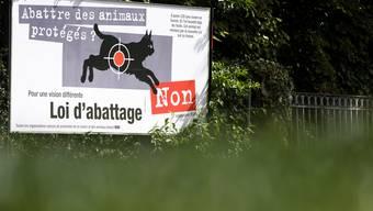 Die Jagdgesetz-Gegner wollen Hand bieten, um eine neue Lösung für die Regulation der Wolfsbestände auszuarbeiten.