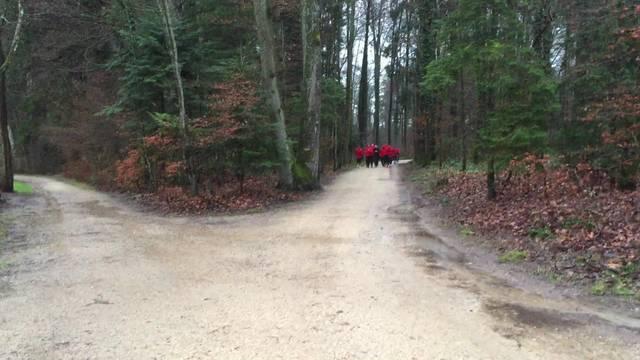 Video vom Trainingsauftakt des FC Aarau: Die Mannschaft von Trainer Schällibaum absolvierte am Donnerstag einen 50-minütigen Lauf durch den Wald