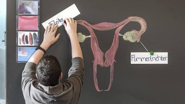 Das Kompetenzzentrum amorix erstellte Grundlagen zur schulischen Sexualerziehung und Sexuelpädagogik. Nun wird es geschlossen (Symbolbild)
