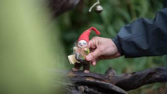 Kinder in Quarantäne durften nicht raus. Nun sind «kurze Frischluftepisoden» mittlerweile erlaubt – beispielsweise im Wald.