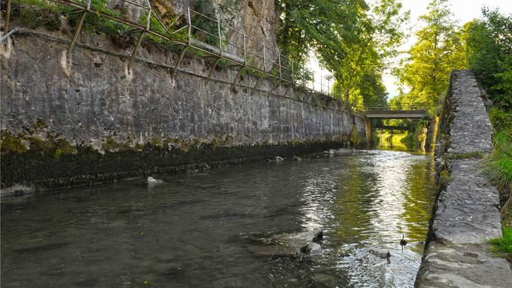 Die Dünnern ist so wie auf diesem Bild bei Balsthal oft hart verbaut und verfügt über wenig natürliche Ufer.