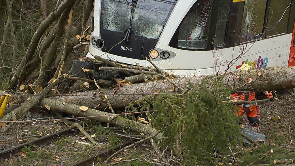 Sturm «Sabine» sorgt für Chaos und Zerstörung