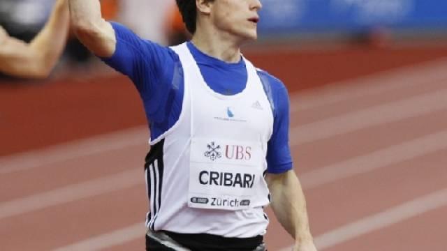 Marco Cribari
