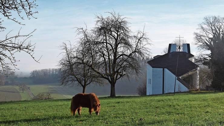 Vor der Muttergotteskapelle auf dem Oberniesenberg begrüsst ein gemütlich grasendes Pony alle Besucher, die vorbeikommen. Die Kapelle beim Schloss Hilfikon ist nicht besonders gross, aber sehr stilvoll verziert. Im Gnadenthal bringt mich die Natur, trotz Nebel und Wind, zum Staunen.