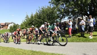 Die Radsportfans feuern ihre Helden im Aufstieg der Austragung von 2019 an
