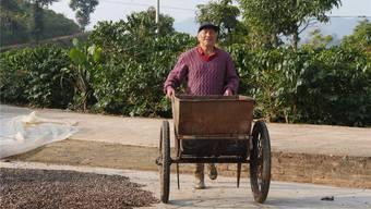 Mango-Bauer Wang Zhongxue verdient sein Geld jetzt mit Kaffee. Picasa