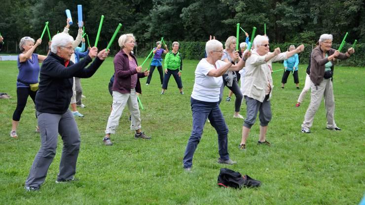 Ein tolles Angebot der Pro Senectute Aargau: Die Seniorinnen und Senioren treiben mit Freude Sport.