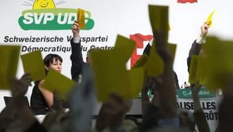 Die SVP-Delegierten sagen zweimal Nein in Genf