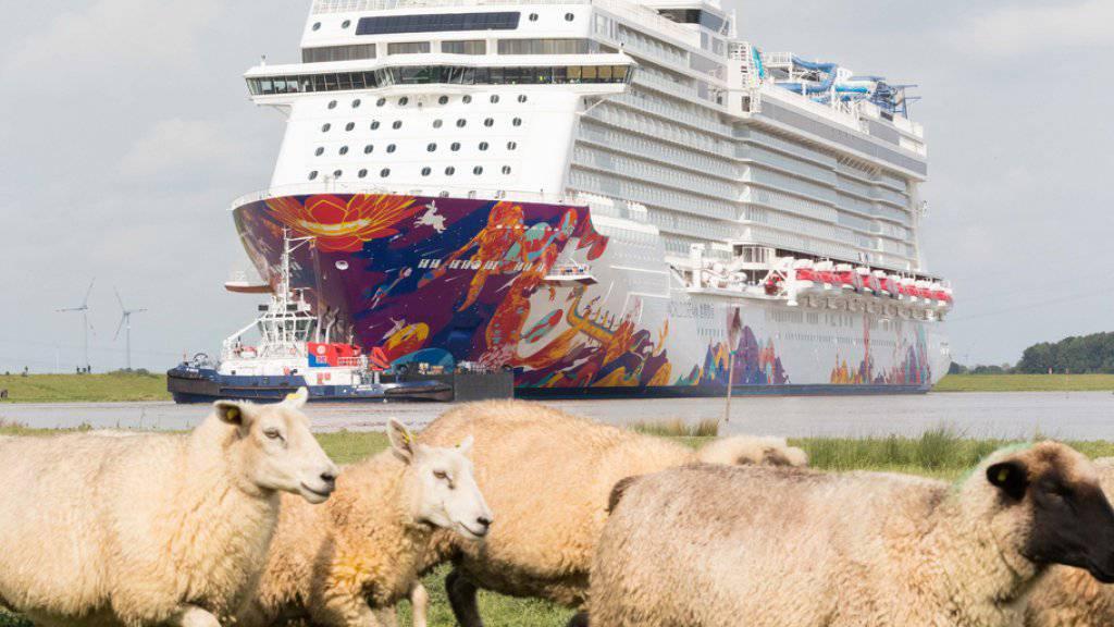 Das Schiff «World Dream» wird auf der schmalen Ems in die Nordsee überführt.