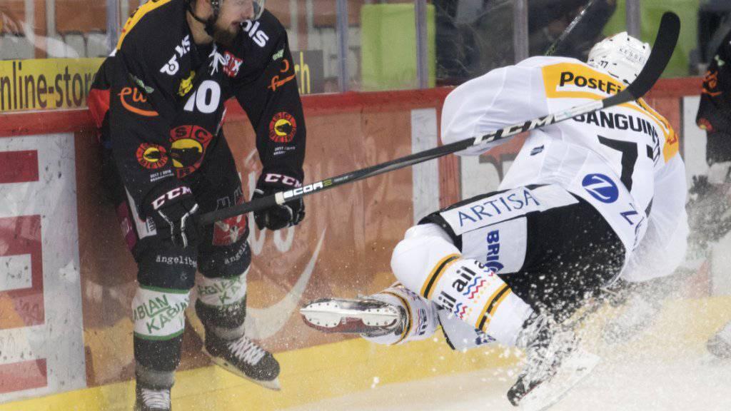 Achtung, Spieler kommt geflogen: Berns Tristan Scherwey sieht Luganos Bobby Sanguinetti heranfliegen.