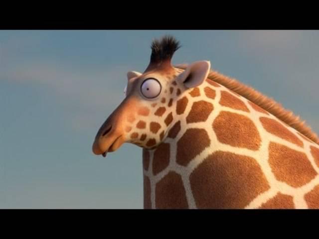 Herbst 2016: die runde Giraffe